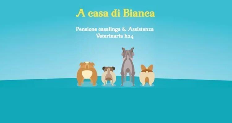 """Pensione per cani """"A casa di Bianca"""" a Campagnano di Roma"""
