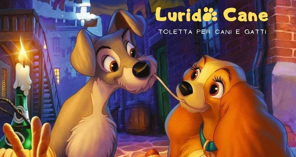 Toletta per cani Lurido Cane a Campagnano